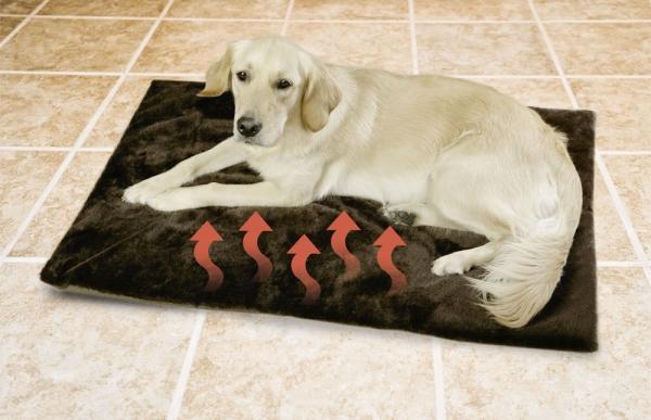 Thermo-Matte für den Hund