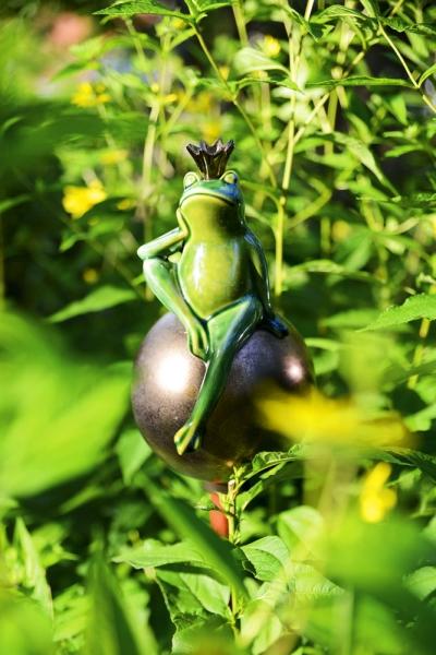 64009-Froschkoenig-auf-Kugel-Ambiente