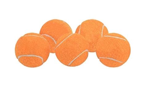 Ersatzbälle für die Ballwurfmaschine, 5 Stück