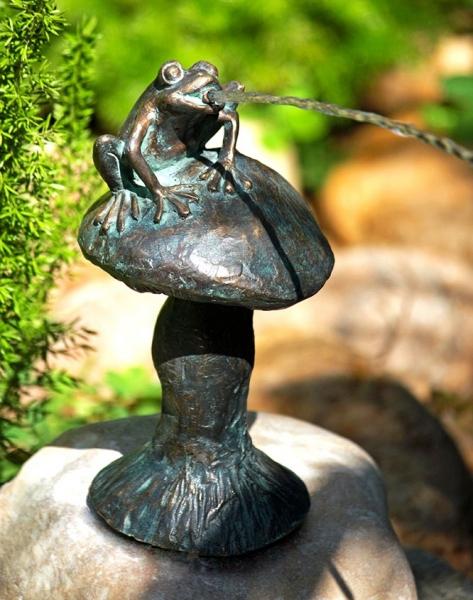 Frosch auf Pilz
