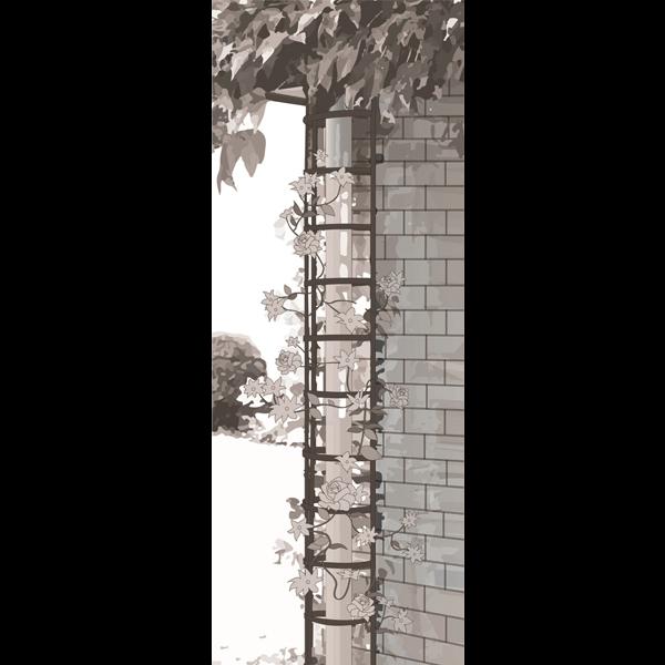 Rankgitter halbrund für Fallrohr, 2er-Set