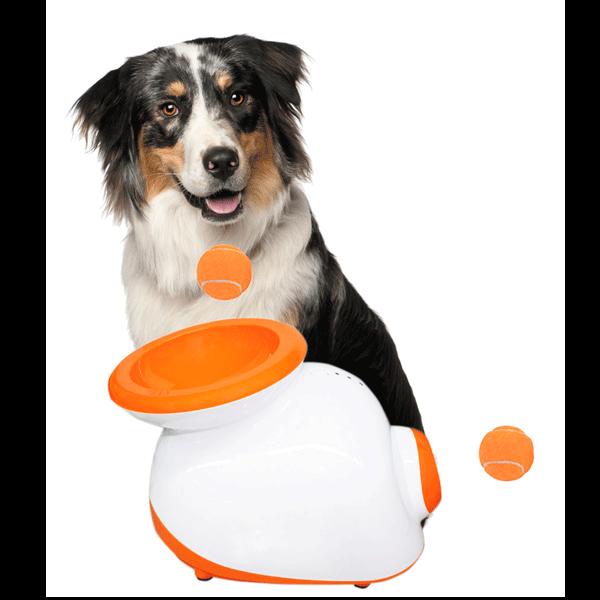 Ballwurfmaschine für den Hund